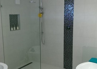 Frameless Shower Panel